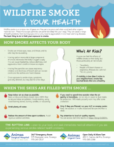 The effects of wildfire smoke
